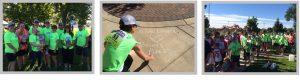 Alpine Lumber Builder Oriented & Residential Lumber Solutions 3 pix imagegimp 300x83 - 3 pix imagegimp